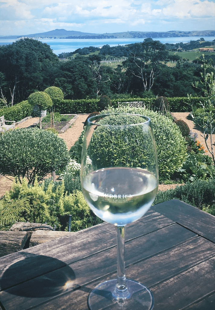 Best Things to do Auckland - Day trip to Waiheke Island for wine tasting